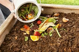 COMPOSTING IS KEY TO BUILDING SUSTAINABLE GARDENS